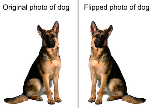 Example of flipped image